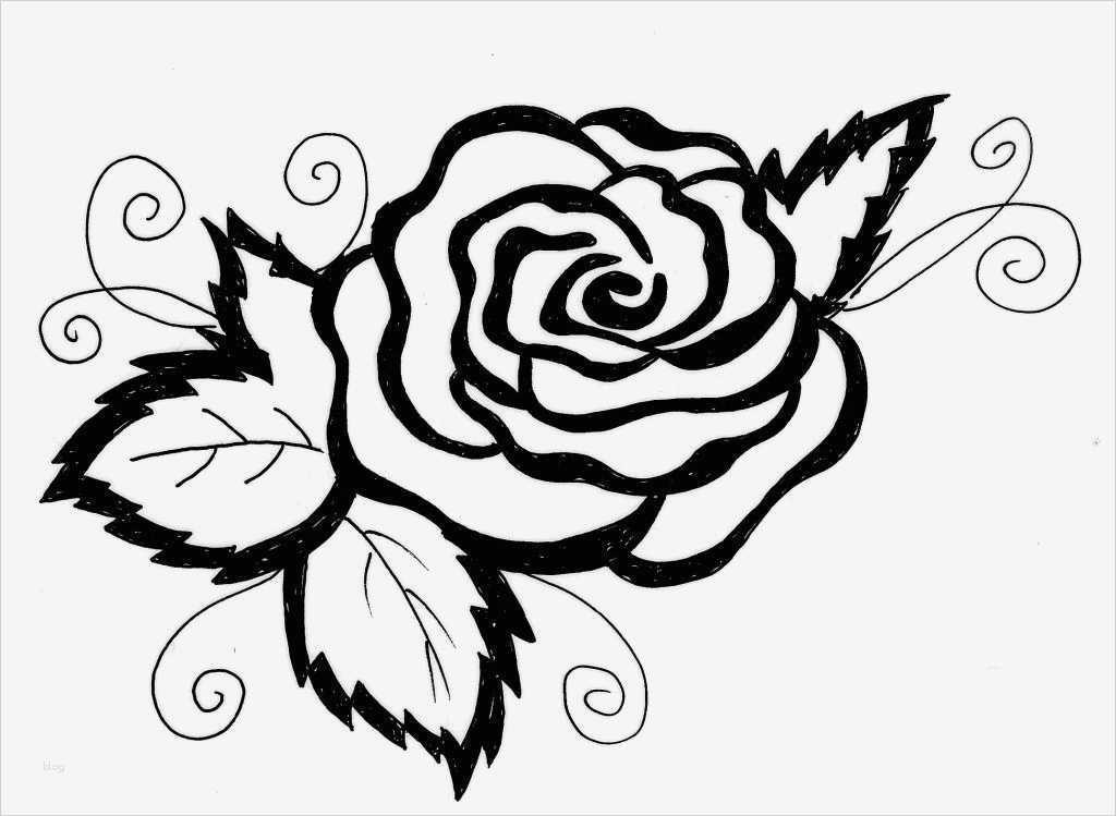 blumen zeichnen vorlagen süß ausmalen malvorlagen gratis