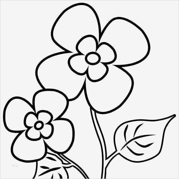 blumen zeichnen vorlagen süß blumen malvorlagen kostenlose