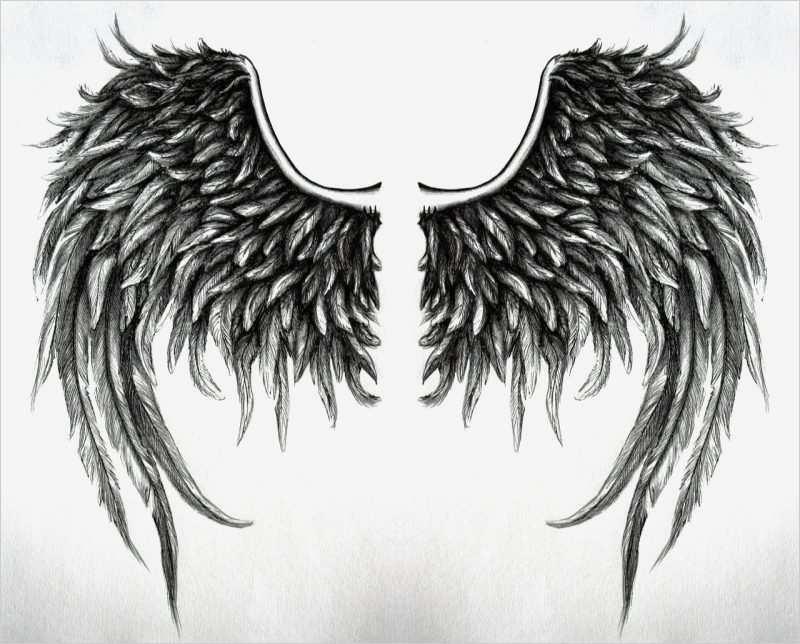 engelsflügel vorlage wunderbar das beliebte tattoo von