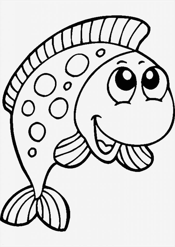 fische zeichnen vorlagen beste malvorlagen fische gratis