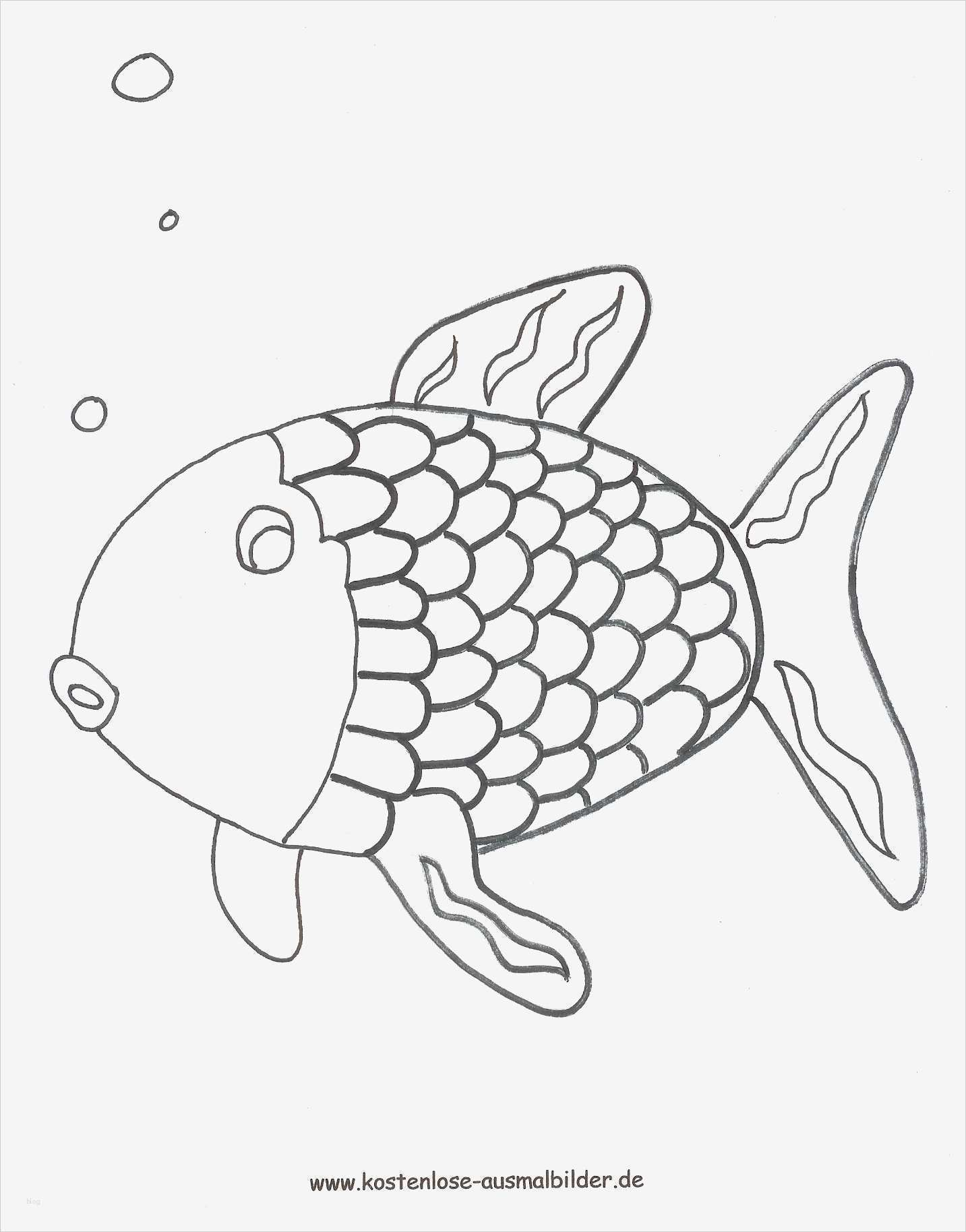 fische zeichnen vorlagen cool ausmalbilder regenbogenfisch