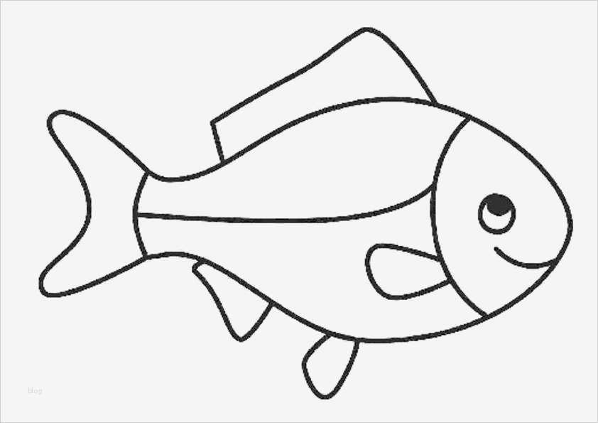 fische zeichnen vorlagen einzigartig bilder fische zum