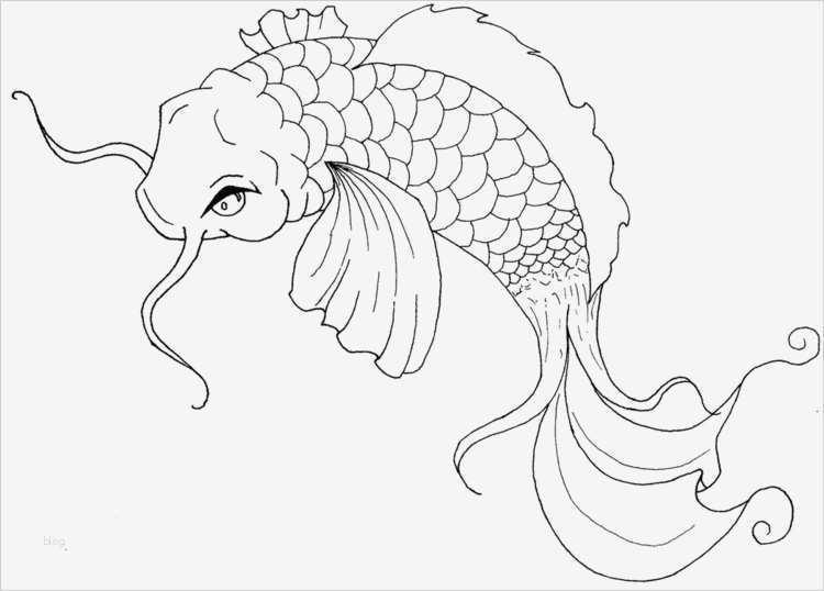 fische zeichnen vorlagen hübsch zentangle vorlagen gratis