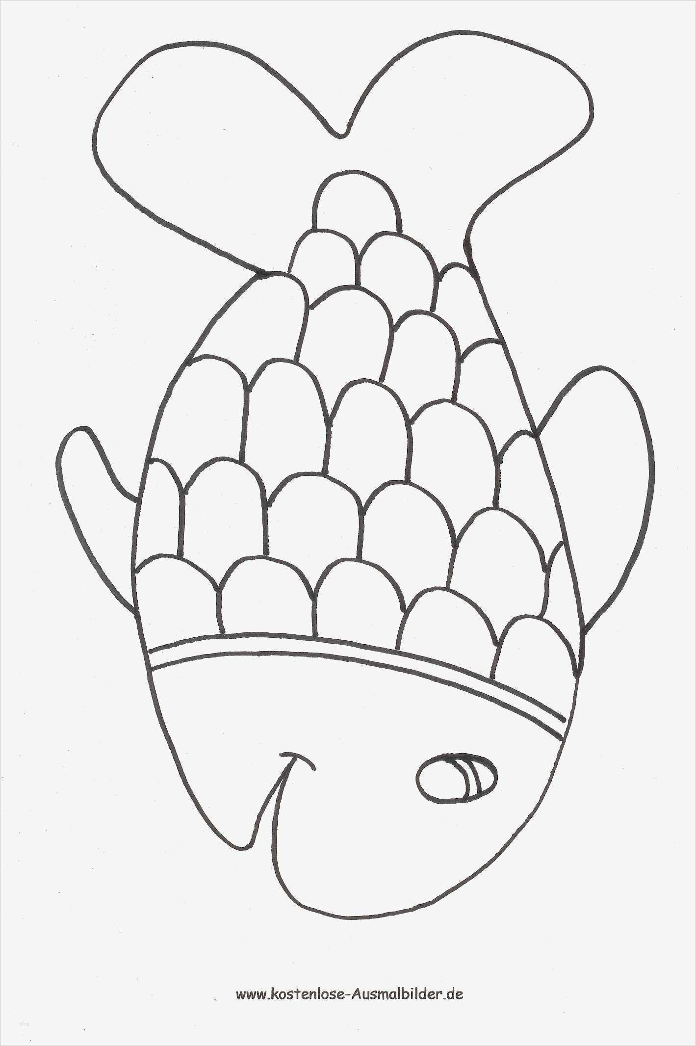 fische zeichnen vorlagen luxus ausmalbilder für kinder