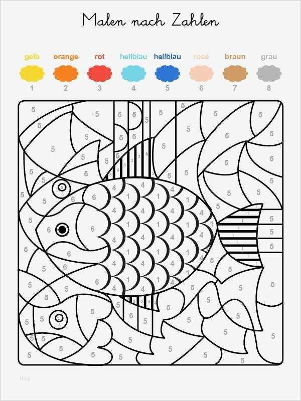 fische zeichnen vorlagen wunderbar kostenlose malvorlage