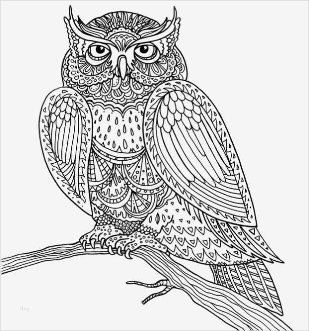 malen für erwachsene vorlagen kostenlos großartig mandala