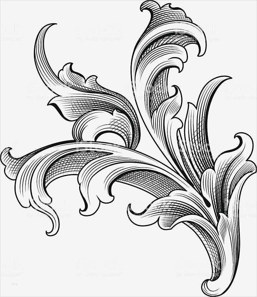 ornamente vorlagen genial designeda hand engraver to