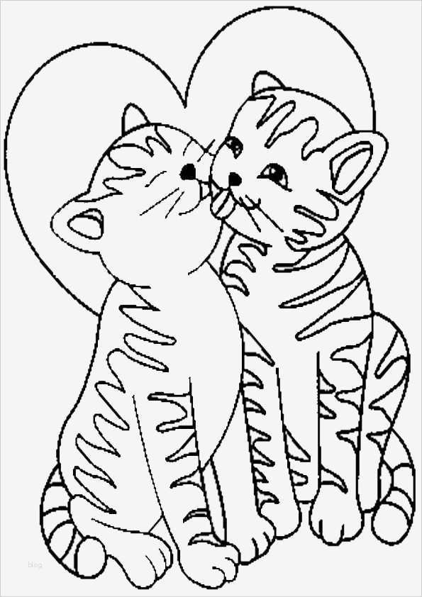 vermisstenanzeige vorlage süß nett malvorlagen katzen zum