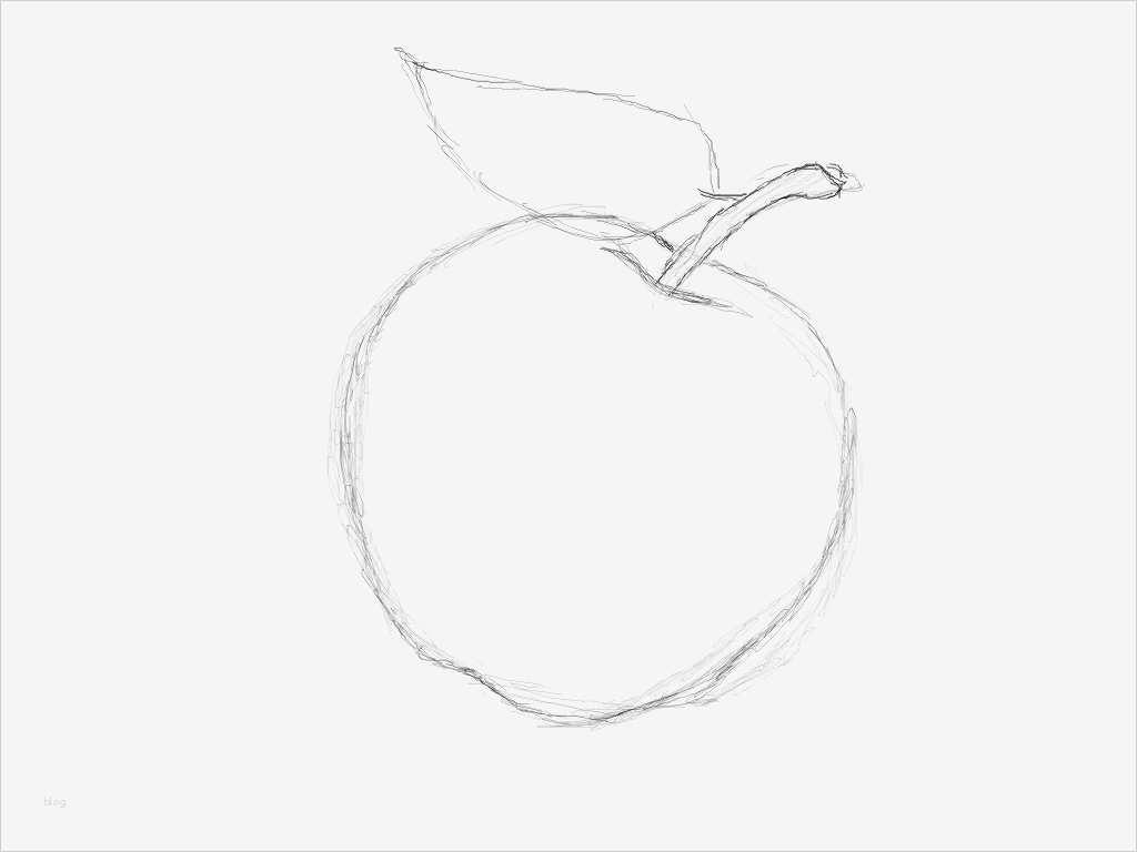 Vorlage Apfel Zum Ausschneiden Neu 4 2 Ein Apfel Gimp ...