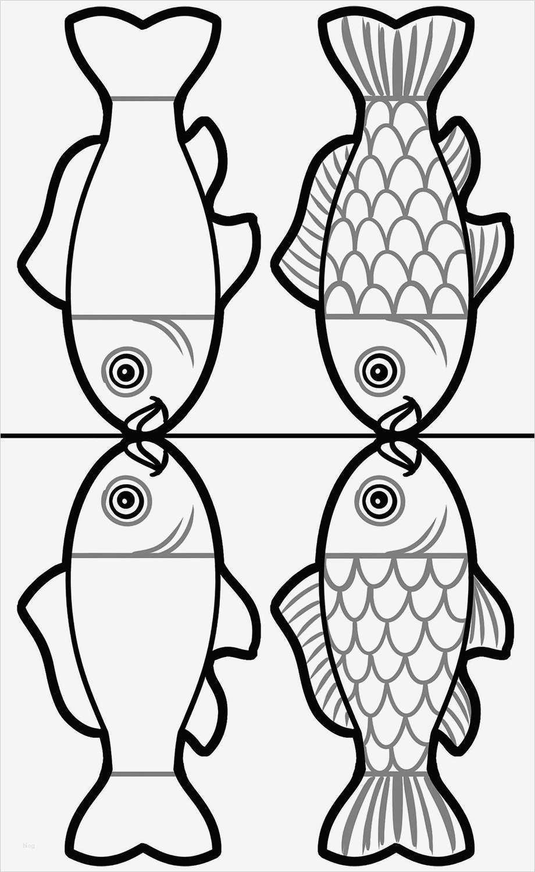 vorlage fisch basteln gut fliegende fische  vorlage ideen