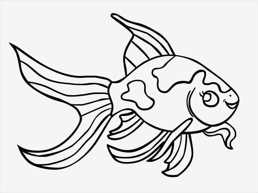 vorlage fisch basteln neu malvorlagen fisch zum ausdrucken