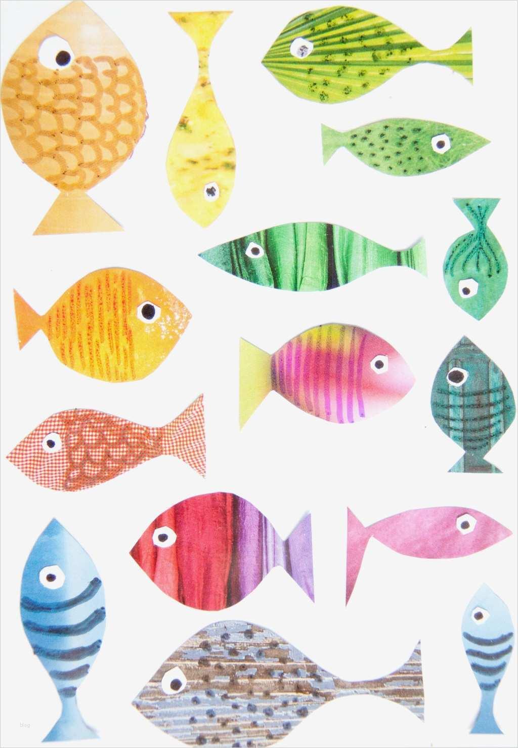 Vorlagen Fische