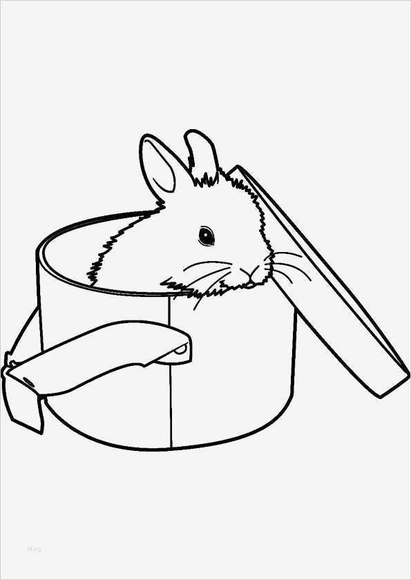 kaninchen zuchtbuch vorlage wunderbar modern ausmalbilder